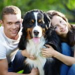 Pet Custody and consideration of Pets in Family Court Proceedings